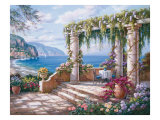 Floral Patio II Reproduction procédé giclée par Sung Kim