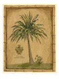 Caribbean Palm III Poster by Betty Whiteaker