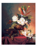 Southern Beauties Giclee Print by Fran Di Giacomo