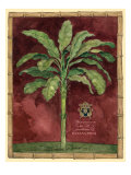 Caribbean Palm II Poster by Betty Whiteaker