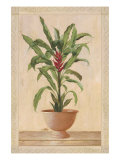 Potted Palm II Premium Giclee Print by  Welby