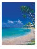 Bahama Cove Print by Fred Fieber