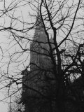 Tree and Church of Gothic Construction, Bern, Swiss Photographic Print by Tomaru Eiichi