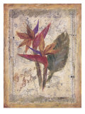 Birds of Paradise Prints by Shari White
