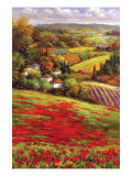 Valley View III Premium Giclee Print by  Hulsey