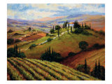 Tuscan Afternoon Reproduction procédé giclée par Steve Thoms