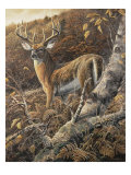 Duke of Autumn Premium Giclee Print by Duane Geisness