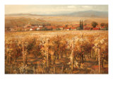 Italian Golden Vineyard Premium Giclee Print by K. Adams