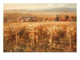 Italian Golden Vineyard Premium Giclee Print by K. Adams