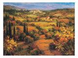 Umbria Panorama Premium Giclee Print by S. Hinus