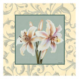 Lillies with Scroll Prints by Catherine Jones