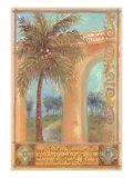 Shari White - Kokosová palma Speciální digitálně vytištěná reprodukce