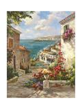 Buena Vista II Premium Giclee Print by  Paline