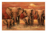 Bull Elephants Art by Kanayo Ede