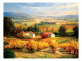 Hazy Tuscan Farm Premium Giclee Print by S. Hinus