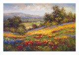 Campo di Fiore I Prints by  Hulsey