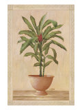 Potted Palm I Premium Giclee Print by  Welby