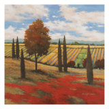 Chianti Country I Print by Kanayo Ede