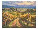 Vineyard Hill I Print by Sung Kim