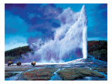 Old Faithful Giclee Print by Paco Young