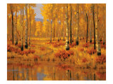 Forest in Gold Premium Giclee Print by Roger Williams