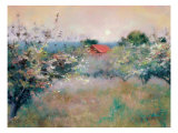Apple Orchard Giclee Print by Esther Engelman
