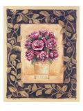 Cabbage Rose Print by Shari White