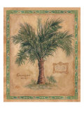 Palm Carpoxylon Giclee Print by Betty Whiteaker