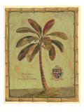 Caribbean Palm IV Giclee Print by Betty Whiteaker