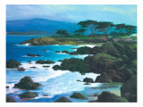 Coastline at Pacific Grove Giclee Print by Brian Blood