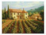 Roger Williams - Tuscan Vineyard Speciální digitálně vytištěná reprodukce