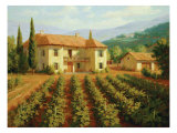 Tuscan Vineyard Premium Giclee Print by Roger Williams