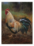 White And Green Rooster Premium Giclee Print by Nenad Mirkovich