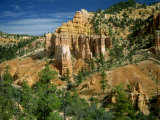 Fairyland in the Bryce Canyon National Park in Utah, USA Photographic Print by Nigel Callow