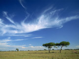 Cloud Formation over Serengeti Landscape Tanzania, East Africa, Africa Photographic Print by Nigel Callow