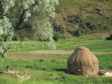 Yurt Beside Fields and Trees at Kokbulak in Kazakhstan, Central Asia Photographic Print by Nigel Callow