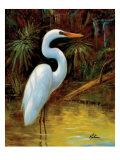 Tropical Egret I Premium Giclee Print by  Kilian