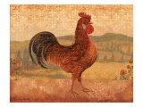 Florentine Rooster II Prints by Lisa Ven Vertloh