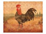 Florentine Rooster I Kunstdrucke von Lisa Ven Vertloh