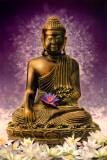 Bouddha Photographie
