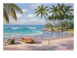 Tropical Bay Premium Giclee Print by Sung Kim