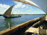 Dhows on River, Lamu, Kenya, East Africa, Africa Photographic Print by Tom Ang
