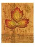 Autumn Leaf III Premium Giclee Print by Marcia Rahmana