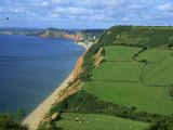 Coastline Near Sidmouth, Devon, England, United Kingdom, Europe Photographic Print by Michael Black
