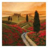 Mohnblumen Kunstdrucke von Thomas Mcgrath