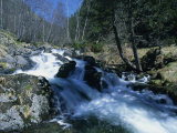 Mountain Stream in La Massana in Andorra, Europe Photographic Print by Jeremy Bright