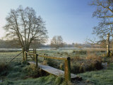 Frost at Thundery Meadows, Elstead, Surrey, England, UK Photographic Print by Pearl Bucknall