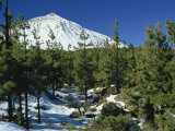 Winter Scene, Mount Teide, Tenerife, Canary Islands, Spain, Europe Photographic Print by Jean Brooks