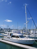 Boats in the Westhaven Yacht Marina in the City of Auckland, North Island of New Zealand Photographic Print by Jeremy Bright
