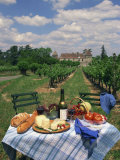 Table Set with a Picnic Lunch in a Vineyard in Aquitaine, France, Europe Photographic Print by Michael Busselle